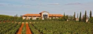 Heredad de Urueña, l'azienda vinicola che ha ospitato il simposio.